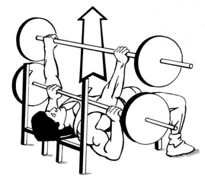 Proper form for bench press