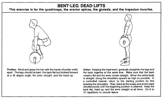 Proper form for deadlift